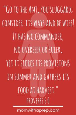 Preparedness Quotes Vol. 1 @ MomwithaPREP.com