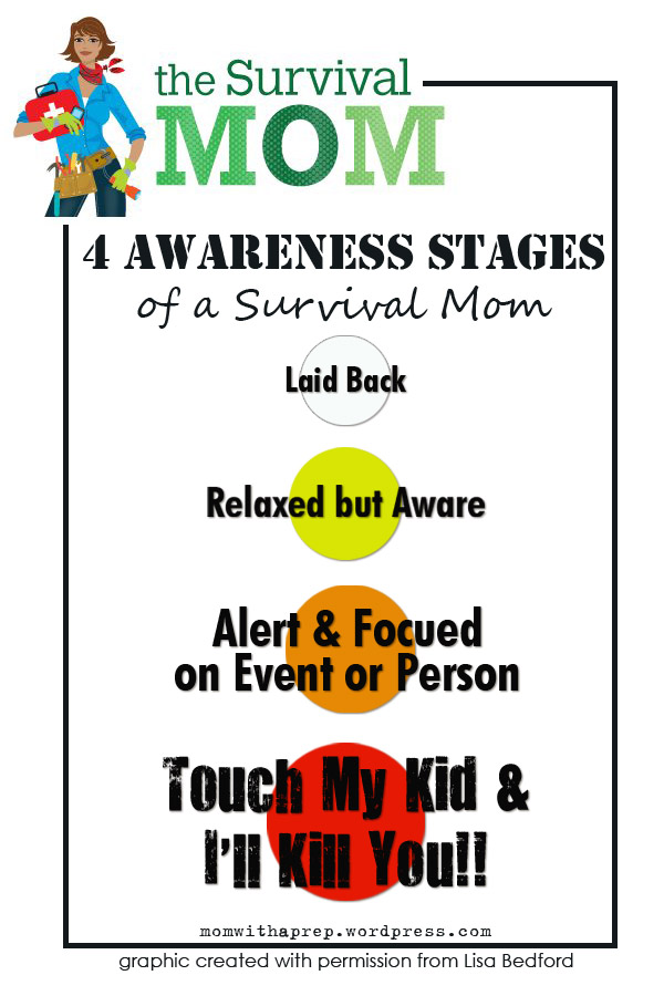 """4 Stages of Awareness of a """"Survival Mom""""  