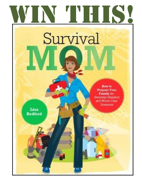 WIN IT! The Survival Mom Book ~ Mom with a Prep {blog}