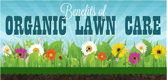 Benefits of organic lawn care