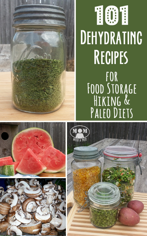 101 dehydrating recipes for food storage hiking and paleo diets mom with a prep 101 dehydrating recipes for food storage hiking and paleo forumfinder