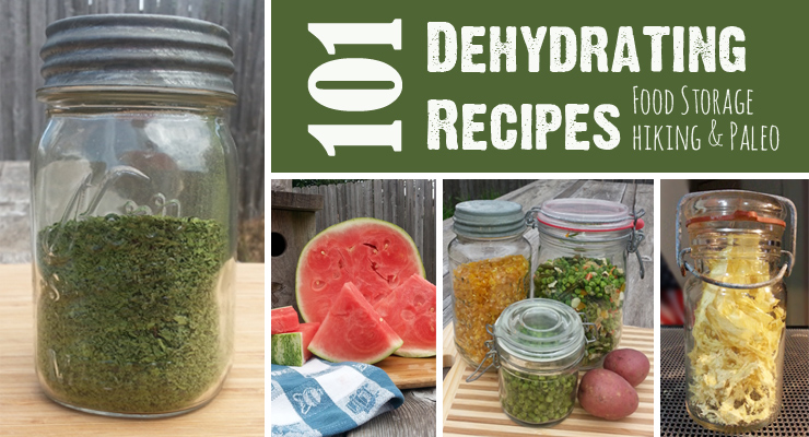 101 Dehydrating Recipes For Food Storage Hiking And