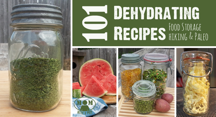 dehydrating-recipes