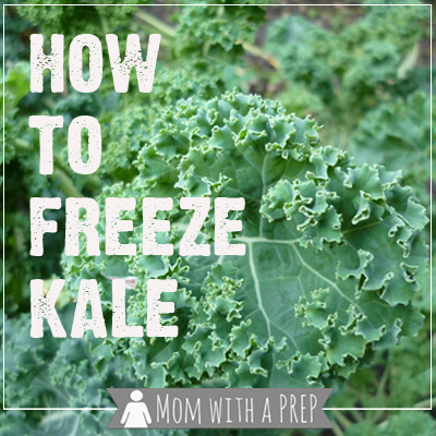 Mom with a PREP | YWhen you have an overabundance of kale from a bumper garden crop or a CSA basket or a great sale at the grocers, what do you do with all that extra kale if you aren't dehydrating it? You can freeze it raw, especially if you're using it for smoothies!
