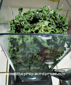 Momwith a Prep - dehydrated kale about to be powdered