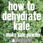 How to Dehydrate Kale for Making Kale Chips or Kale Powder - fabulous method to preserve kale well past the season!