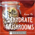 "Mom with a PREP |Love mushrooms all year long but have a hard time keeping them in stock before they get all 'fungusy?"" Dehydrating mushrooms is easy! #foodstorage #mushroom"