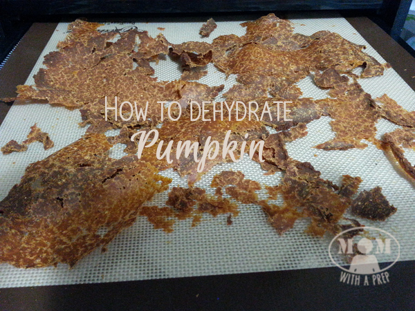 How to Dehydrate Pumpkin at MomwithaPREP.com