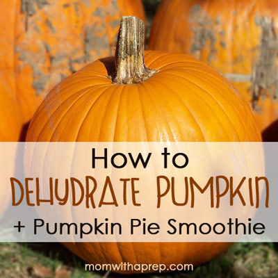 How to Dehydrate Pumpkin + MYO Pumpkin Pie Smoothie  |  Mom with a Prep
