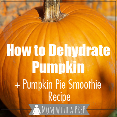Mom with a PREP | Love pumpkin and want to use it all year long? Learn how to roast, puree, dehydrate, rehydrate pumpkin + a make your own pumpkin pie smoothie recipe!