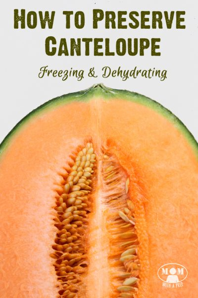 Tips for preserving canteloupe - freezing & dehydrating  |  Mom with a Prep