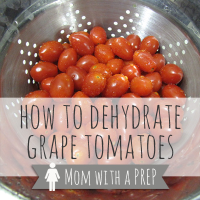How to Dehydrate Grape Tomatoes | Mom with a PREP