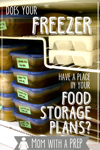 Do you consider your freezer being a vital part of your food storage / preparedness plans? Here are a few thoughts on why you should!