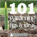 Mom with a PREP | 101+ Gardening Ideas & Tips - from planning to planting to growing to harvesting, ideas and tips for you to grow your own food and be more self-reliant - companion planting chart