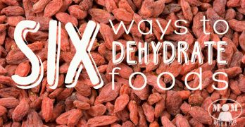 6 Ways to Dehydrate Foods