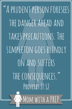"""A prudent person foresees the danger ahead and takes precautions. The simpleton goes blindly on and suffers the consequences."""" Proverbs 27:12"""