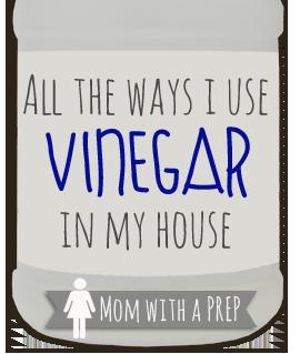 momwithaprep-vinegar2