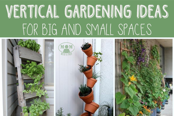 Vertical gardening for big or small spaces mom with a prep - Gifts for small apartments ...