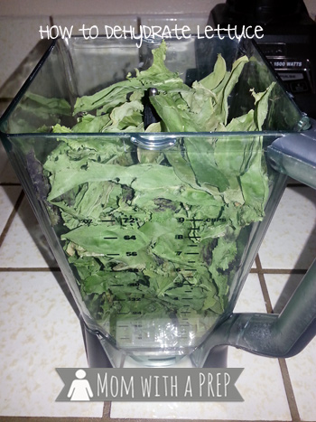 Mom with a PREP   How to Dehydrate Lettuce - Seriously. I know..I know...why on earth would anyone want to dehydrate lettuce? My Answer? Because I can! Find out more here...