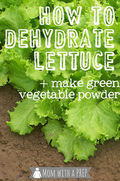 Mom with a PREP   How to Dehydrate Lettuce - Seriously. It's really something I do!