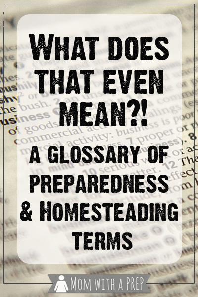 Mom with a PREP | What the Heck does that Even Mean!? Terms like SHTF, TEOTWAWKI, WROL, EMP, and more get thrown around all the time, but do you know what they really mean?