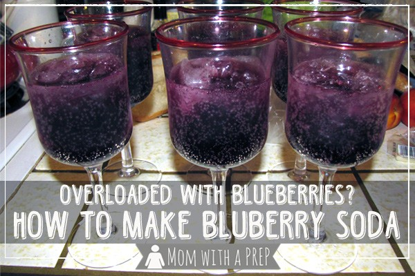 Make blueberry soda from scratch! Use up blueberries from the freezer or food storage and create a delicious summer treat for your kids!