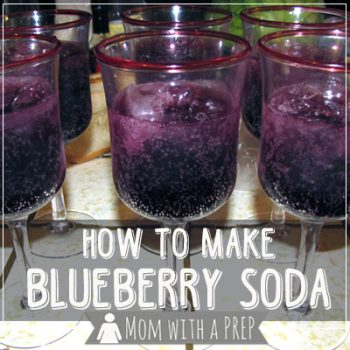 Overloaded with blueberries and don't want to make any more jam or dehydrate them? Try making your own Blueberry Soda! YUMM this stuff is awesome!
