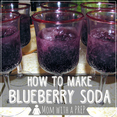 Overloaded with Blueberries? Make Your Own Blueberry Soda