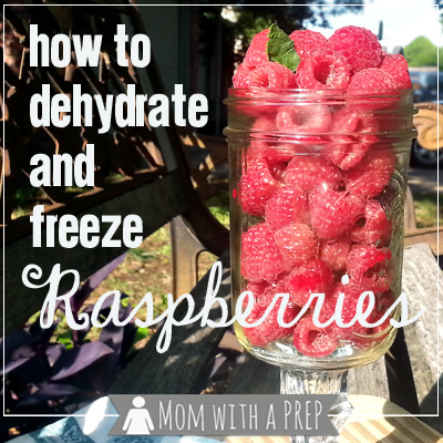Mom with a PREP | Raspberry season is so short - save that goodness throughout the year by dehydrating or freezing. It's super easy!