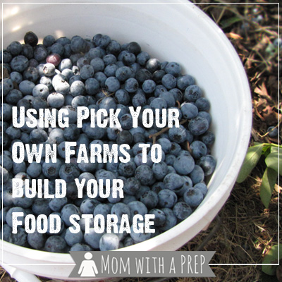 Pick your own farms can give you a chance to stockpile your food storage pantry with fruits and vegetables for a year. Find out how