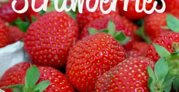 How to Dehydrate Strawberries + A Quick Tip for Hulling