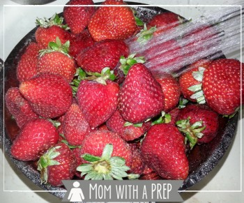 Mom with a PREP | What's the best way of preserving the early summer bounty of strawberries for winter? Dehydrate them! + a quick tip to make hulling strawberries easier!