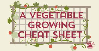 Mom with a PREP | A vegetable growing / planting companion cheat sheet.