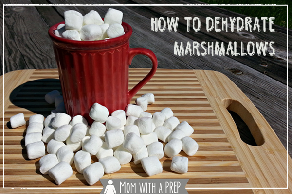 Love those little marshmallows in your hot chocolate in the winter? Are there just never enough? Learn how to make your own! #dehydrate