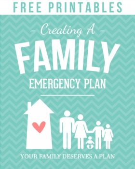 Do you have a Family Emergency Binder at home? Do you always mean to put one together but just haven't had time? Here's a resource to find an emergency binder just for you that you can put together quickly - includes fabulous ready-made binders and free downloads. Free Printables from Simply Fresh Designs.