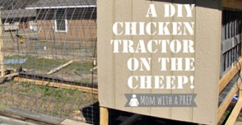A DIY Chicken Tractor on the Cheep!
