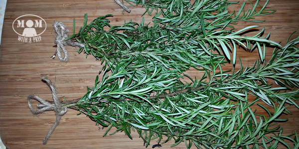 Rosemary is a great evergreen herb that you can harvest all year long. But if your plant hasn't reached gargantuan sizes, yet, or if you aren't able to grow it, you can dehydrate it to have in your pantry all year!Rosemary is a great evergreen herb that you can harvest all year long. But if your plant hasn't reached gargantuan sizes, yet, or if you aren't able to grow it, you can dehydrate it to have in your pantry all year!