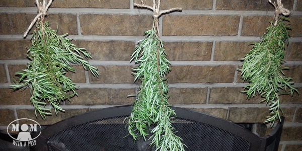Rosemary is a great evergreen herb that you can harvest all year long. But if your plant hasn't reached gargantuan sizes, yet, or if you aren't able to grow it, you can dehydrate it to have in your pantry all year!