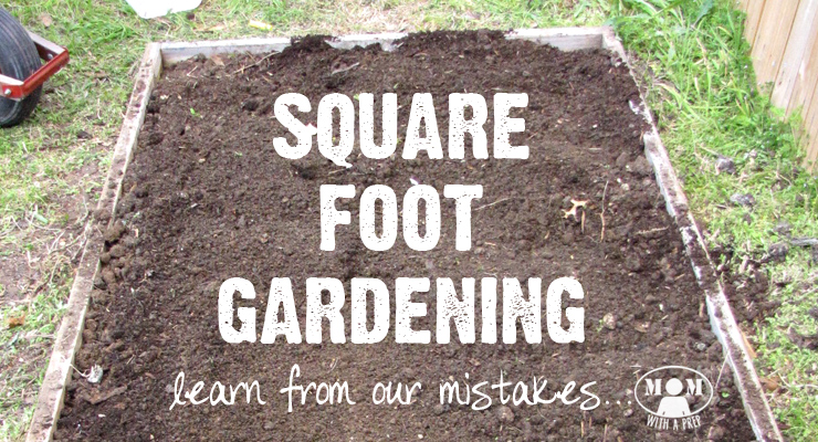 Square Foot Gardening Mistakes   Learn From Ours First!   Mom With A PREP