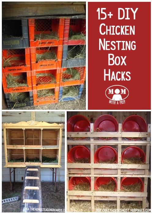 Best Chicken Nesting Box Design