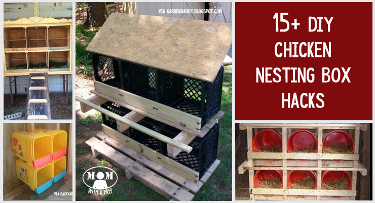 15 Chicken Nesting Box Hacks Mom With A Prep
