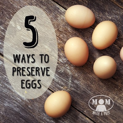 If you find yourself up to your eyeballs in eggs from overproduction or a great sale, here are 5+ ways to preserve them from Momwithaprep.com