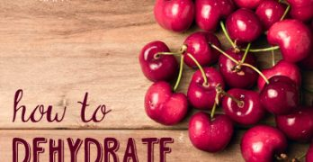 HOW TO DEHYDRATE CHERRIES -- Cherry season is awesome....but when you have more than you can eat, what can you do with them? Dehydrate them! It's super easy and they are versatile to use in dehydrated form! Find out more @darcy-baldwin.com