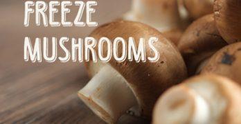 Freeze Mushrooms ? You bet you can!