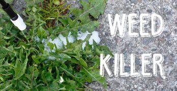 DIY Natural, Homemade Weed Killer