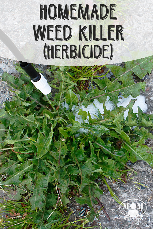 Diy natural homemade weed killer mom with a prep - Weed killer safe for vegetable garden ...
