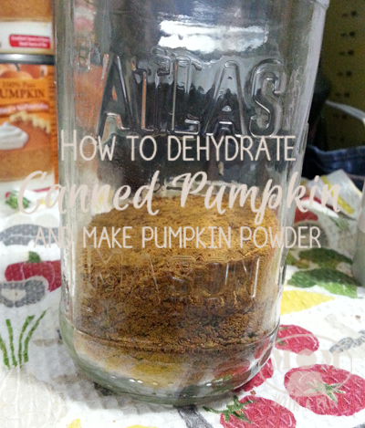 Swimming in canned pumpkin or freezer bags full of pumpkin puree? Here's how to dehydrate your canned pumpkin puree and make pumpkin powder!