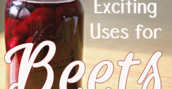 10 New and Exciting Uses for Canned Beets