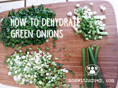 Green onions (or scallions) may seem one of those foods that doesn't seem worth dehydrating....but think again! You can do something amazing with them to make them more versatile in your PREPared kitchen!