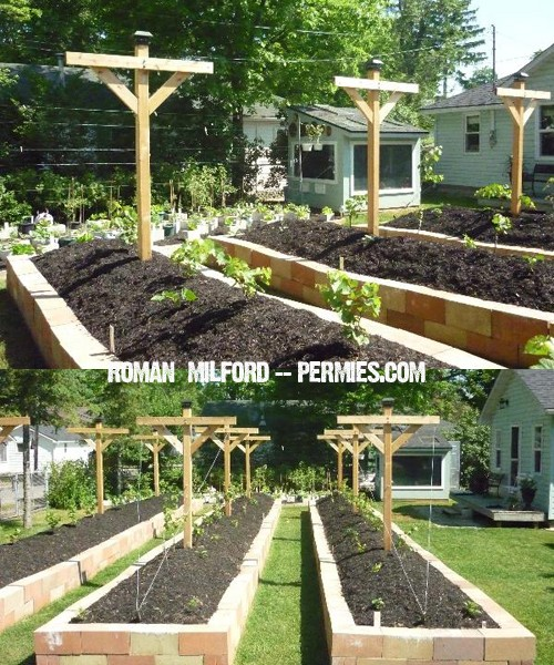 Unique Raised Bed Garden Ideas: 9 DIY Raised Bed Garden Designs And Ideas